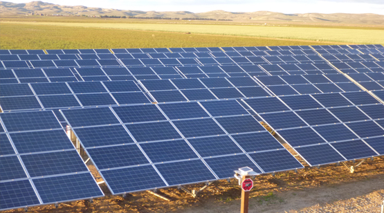 JSA_Farms_Solar_Array_6