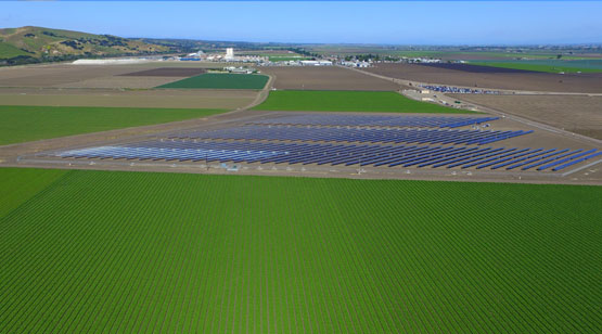 DArrigo_Farms_SolarProject_10