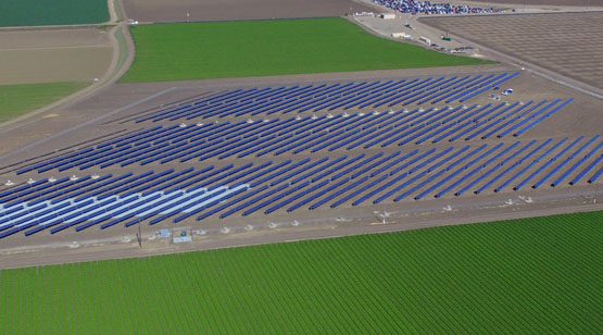 DArrigo_Farms_SolarProject_11