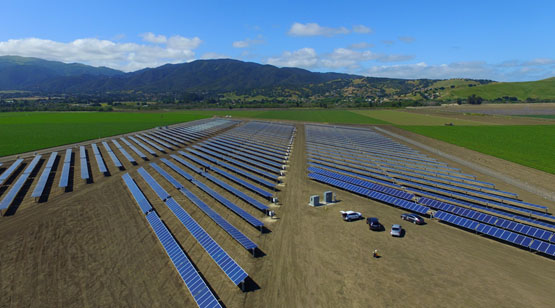 DArrigo_Farms_SolarProject_14