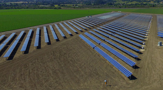 DArrigo_Farms_SolarProject_15