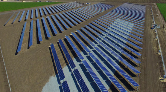DArrigo_Farms_SolarProject_16