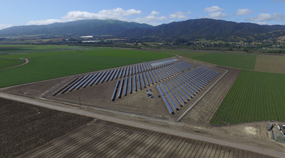 DArrigo_Farms_SolarProject_3