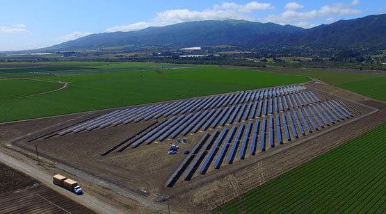 DArrigo_Farms_SolarProject_6