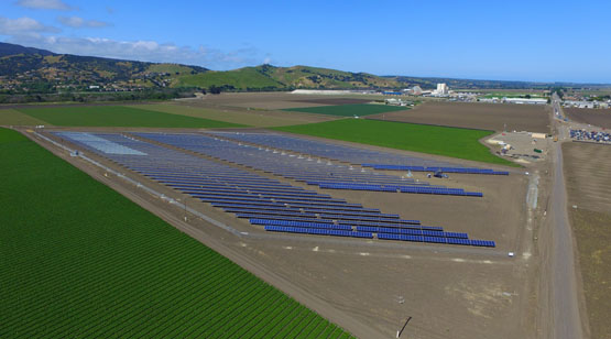 DArrigo_Farms_SolarProject_9