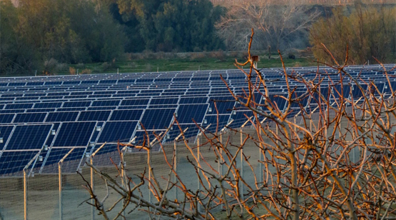 Pleasant_Valley_Pistachios_Solar_Array_17