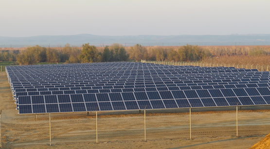 Pleasant_Valley_Pistachios_Solar_Array_8_0